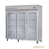 供应连锁花店鲜花保鲜柜 鲜花冷藏柜 不锈钢冷藏柜 东莞冷柜公司销售
