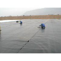 厂家设计施工垃圾场渗滤液调节池防臭气盖 供应防臭膜