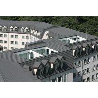 成武市政府办公楼返修,唯美建筑装饰瓦片——济南迪斯卡维沥青瓦