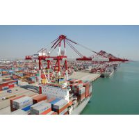 专业进口代理 肯尼亚皮料进口到中国,香港中转包税到门服务