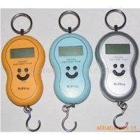 供应小吊秤电子手提秤葫芦形电子吊钩秤40kG/20kg/10kg