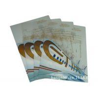 供应透明PP文件夹 PVC文件夹 L型文件夹 定制A4彩色文件夹