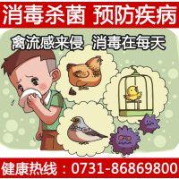供应家庭消毒除味|消毒剂|消毒液|消毒碗柜|除味杀菌|84消毒|漂白水,毛巾消毒预防禽流感