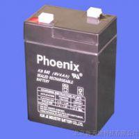菲尼克斯蓄电池生产厂家