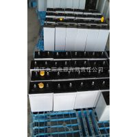 供应生产国标DG-250电动搬运车,2伏平板车牵引车用蓄电池