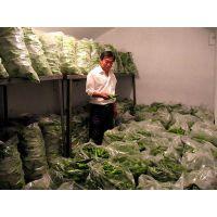 供应乌鲁木齐蔬菜保鲜库储存温度是多少