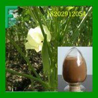 黄秋葵提取物 方晟生物现货供应 黄秋葵提取物 优质保健品原料