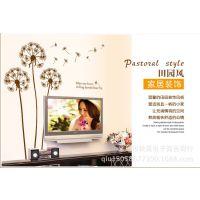 客厅电视背景墙 AY695(小) 第三代墙贴 PVC透明 棕色蒲公英