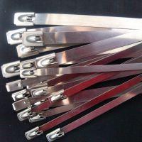 不锈钢扎带喷塑不锈钢带304喷塑自锁式扎线带 彩色不锈钢扎带