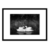 黑白色现代简约 人物写真/艺术照相框 35MM特厚纯实木的 摄影相框