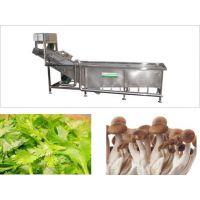 供应配餐中心设备连续式果蔬清洗机