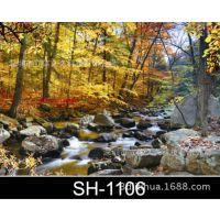 旅游景区山泉水SH-1106大幅面3D广告画 立体装饰画 三维立体动感