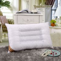 正品决明子枕头 优质珍珠棉保健枕 保健枕 护颈枕 颈椎枕芯 批发