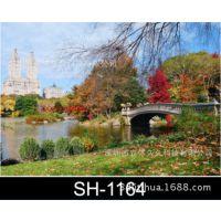 家庭电表箱3D装饰画,三维配电箱装饰画,3D立体装饰画图SH-1164