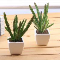 仙人柱仿真热带植物小盆景多肉植物 陶瓷盆拍摄道具办公家居装饰