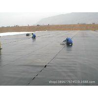 厂家直销规格齐全防渗膜聚乙烯土工膜园林景观绿化水利工程防渗膜