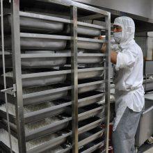 供应中央厨房设备厂家75KG燃气蒸箱