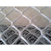 供应养殖塑料网 胶网 塑胶网 阻燃网 灰色阻燃塑料网
