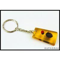 【厂家直销】昆虫琥珀饰品 琥珀钥匙扣 透明挂件 两元爆款