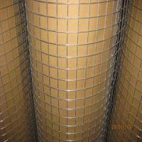 供应各种型号电焊网 浸塑电焊网 镀锌电焊网 厂家直销 超低价格