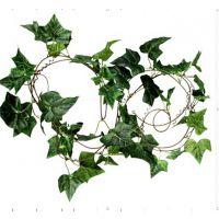 高仿真花藤藤条批发常青藤蔓绿叶客厅空调水管道装饰花绿植壁挂