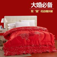 若彦家纺 婚庆大红被子 结婚用2米被芯 加大2.2秋冬被 厂家直销