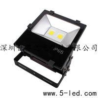 深圳世界之光LED灯厂家供应LED投光灯聚光灯30W