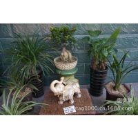 常年供货 亮点陶瓷艺术品批发 园艺家居装饰 蕉叶大象 WT09680