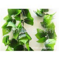 葡萄叶花藤。塑料花藤。小花藤。装饰花头。花藤