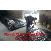 郑州批发温室大棚保温被厂家 蔬菜大棚安装公司