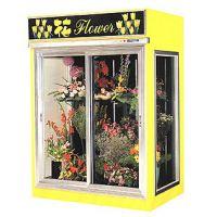 供应鲜花存储 鲜花保存 佳伯玫瑰保鲜展示柜 鲜花店鲜花柜图片