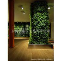 定做酒店餐饮植物墙 仿真草坪植物墙 背景墙蕨类植物素材批发