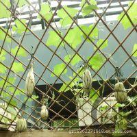 供应永牌瓜棚网 福建 广西大棚塑料网批发价格 贵州 湖北植物攀爬网生产厂家