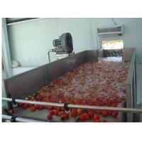 水果浮洗机|灌装封口|果汁设备