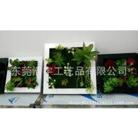 【荐】原生态多肉植物墙 3D绿色植物墙 热带雨林植物墙原创品牌