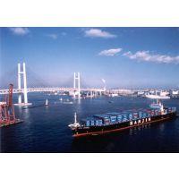 国内海运 青岛到广州海运集装箱运输 广东到山东直航海运物流运输