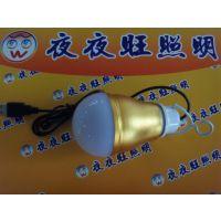 迷你led球泡USB球泡磨砂铝6V 充电宝球泡