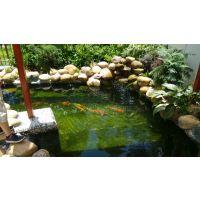 供应鱼池、锦鲤池设计及施工