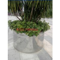 室内装饰不锈钢花盆摆放 写字楼过道不锈钢花盆种植