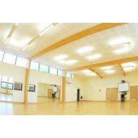 长盈专业室内舞蹈形体房地胶PVC专业舞蹈形体房地板舞蹈形体房运动地板