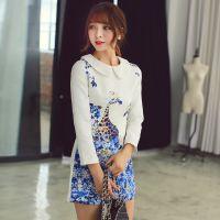 秋冬新款韩版女装娃娃领连衣裙 代理网上开店 网上免费加盟合作