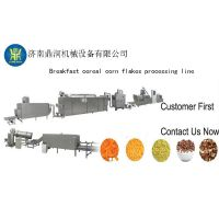 DSE65早餐谷物玉米片膨化机