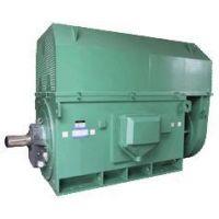 供应哈巴河西玛电机厂生产的Y系列Y5004-6 710KW 10KV高压电动机