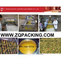 RCGF24-24-8全自动型三合一茶果汁饮料瓶灌装设备
