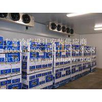 供应供应安庆保鲜冷库 主要设计、安装、维修及保养各种大小型冷库