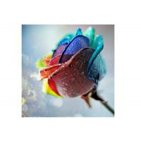 UV万能平板打印机_玻璃陶瓷印花机_UV喷绘机-服装万能彩印机