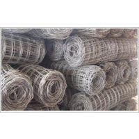 供应包塑支护网|煤矿安全防护网|煤矿支护网|煤矿支护网片