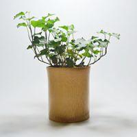 巨匠厂家定制欧式环保天然原竹环保竹子花盆花钵花瓶家居摆设器具