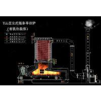 供应工业太康燃煤环保导热油炉
