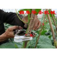 番茄绑枝机 黄瓜茄子绑蔓器 植物固定绑枝机专用胶带钉子